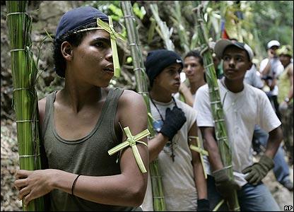 Palm cutters in Caracas, Venezuela