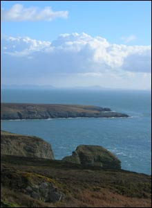Mared Thomas took this picture on a visit to South Stack on Anglesey