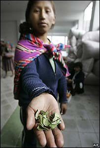 Bolivian woman holding coca leaves