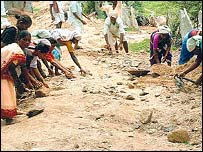 Women labourers work on a village project