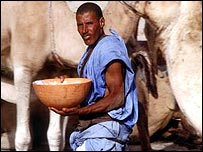 Camel milking in Mauritania
