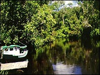 Tanjung National Park, Borneo