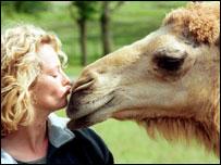 Presentadora de televisión besa un camello