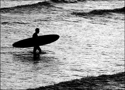 Neil Hanson's dedicated surfer