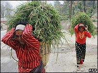 Women carry fodder in Kathmandu