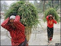 Women carry fodder in Kathmandu