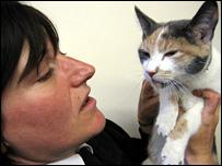 Alison Adam and the cat