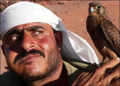 A Yemeni and his hawk.