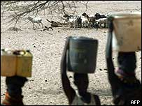Kenyan women carrying buckets of water