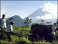 Farmers work as the nearby Merapi volcano spews ash and smoke in Klaten, 04 May 2006