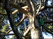 Student being rescued from tree: Photo from Glos Fire and Rescue Service