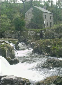Heledd Davies, aged 13, from Newcastle Emlyn, took this picture at Cenarth