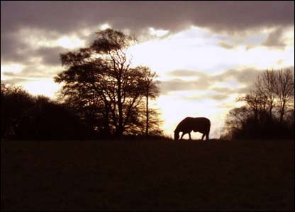 Nick Smith from Cardiff took this excellent shot near Tinkinswood burial chamber (near Dyffryn gardens)