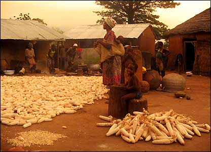 Scene at dusk in the Ghanaian village of Nabila as the evening meal is prepared, sent in by BBC News website reader Lauren Mong