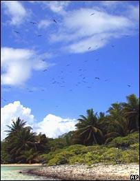 Millennium Island, Kiribati.  Image: AP
