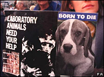 Animal rights protesters