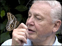Sir David Attenborough, courtesy of the BBC
