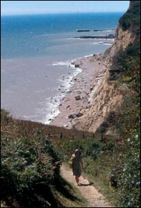 Hastings Country Park (picture from Hastings Borough Council)
