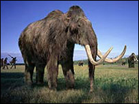 Woolly mammoth from Walking with Beasts