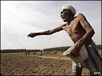 Campesino indio