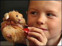 Mike the hamster and new owner Liam Bull