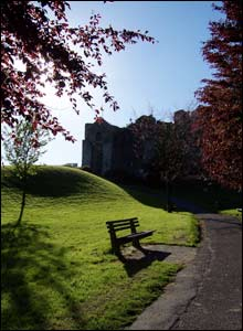 Oystermouth Castle grounds (Tim Curnow)