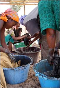 women dyeing cloth, Ndem, Senegal
