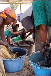 women dyeing cloth, Ndem, Senegal