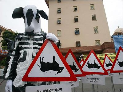 http://newsimg.bbc.co.uk/media/images/41760000/jpg/_41760112_cows.jpg