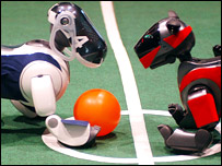 Robot dogs play football
