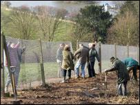 Volunteers working on Richmond Hill