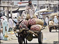 Vegetable cart in Islamabad