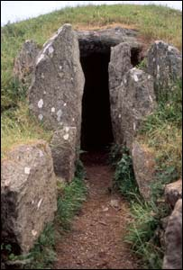 Bryn Celli Ddu entrance : picture - National Museum of Wales