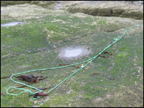 Mooring rope found on Coquet Island