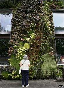 Woman looks at plant-covered front of the museum