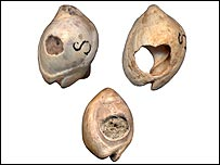 Top row: Nassarius shells from Skhul Cave, Israel; Bottom: Nassarius shell bead from Oued Djebbana, Algeria   Image: Marian Vanhaeren and Francesco d'Errico