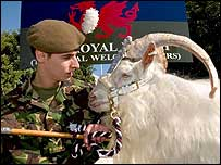 Lance Corporal Dai Davies with Billy (photo by Cpl Nik Howe, Media Ops, Cyprus)