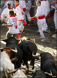 Runners flee from bulls