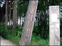 Tradespark Wood, Nairn