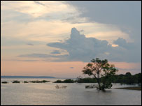 Dusk in the Amazon (BBC)