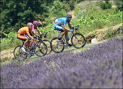 USA's George Hincapie (Discovery Channel/USA) leads Italy's Eddy Mazzoleni (T-Mobile/Ger) and Spain's Iker Camano (Eusktaltel-Euskadi/Spa) ride past a lavender field