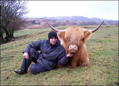Aziz Almoosa with one of his Highland Cattle in Ceredigion