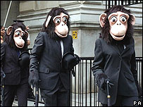 Monkey office workers