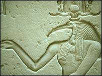 Jeroglífico de Ibis (Imagen: RSPB/Martin Davies)