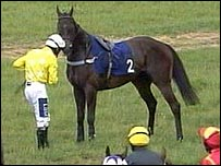 Paul O'Neill with his mount City Affair. Photo: At The Races