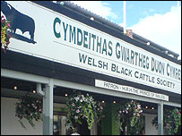 Welsh Black Cattle Society stand at the Royal Welsh Show
