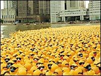 Duck race in Singapore