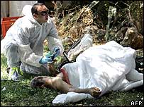 Medic examines the body of a man killed in Nahariya by Hezbollah rocket on 2/8/06