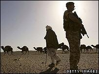 An Afghan Kuchi nomad walks with his herd of camels past a British commando from the 42 Royal Marines, near Camp Bastion