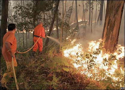Firefighters battle a forest fire in Redondela, north-western Spain, 6 Aug 06